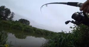 Случай на рыбалке как поймать большую рыбу